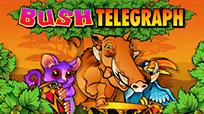 Игровые автоматы Bush Telegraph