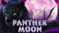 Игровые автоматы Panther Moon