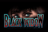 Игровые автоматы Игровой автомат Black Widow – отдых в онлайн-казино